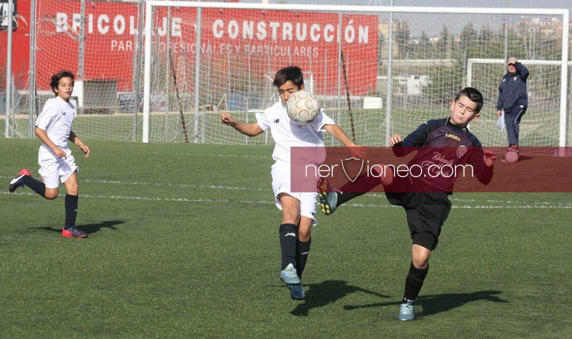 Fotogalería | Sevilla FC – CD Los Caminantes (3ª Andaluza Alevín G.1)