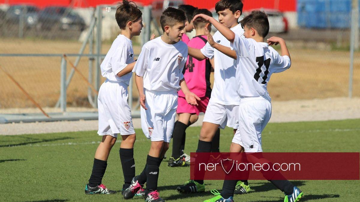 Fotogalería | Sevilla FC – CD El Tinte (3ª Andaluza Alevín G.2 – SE)